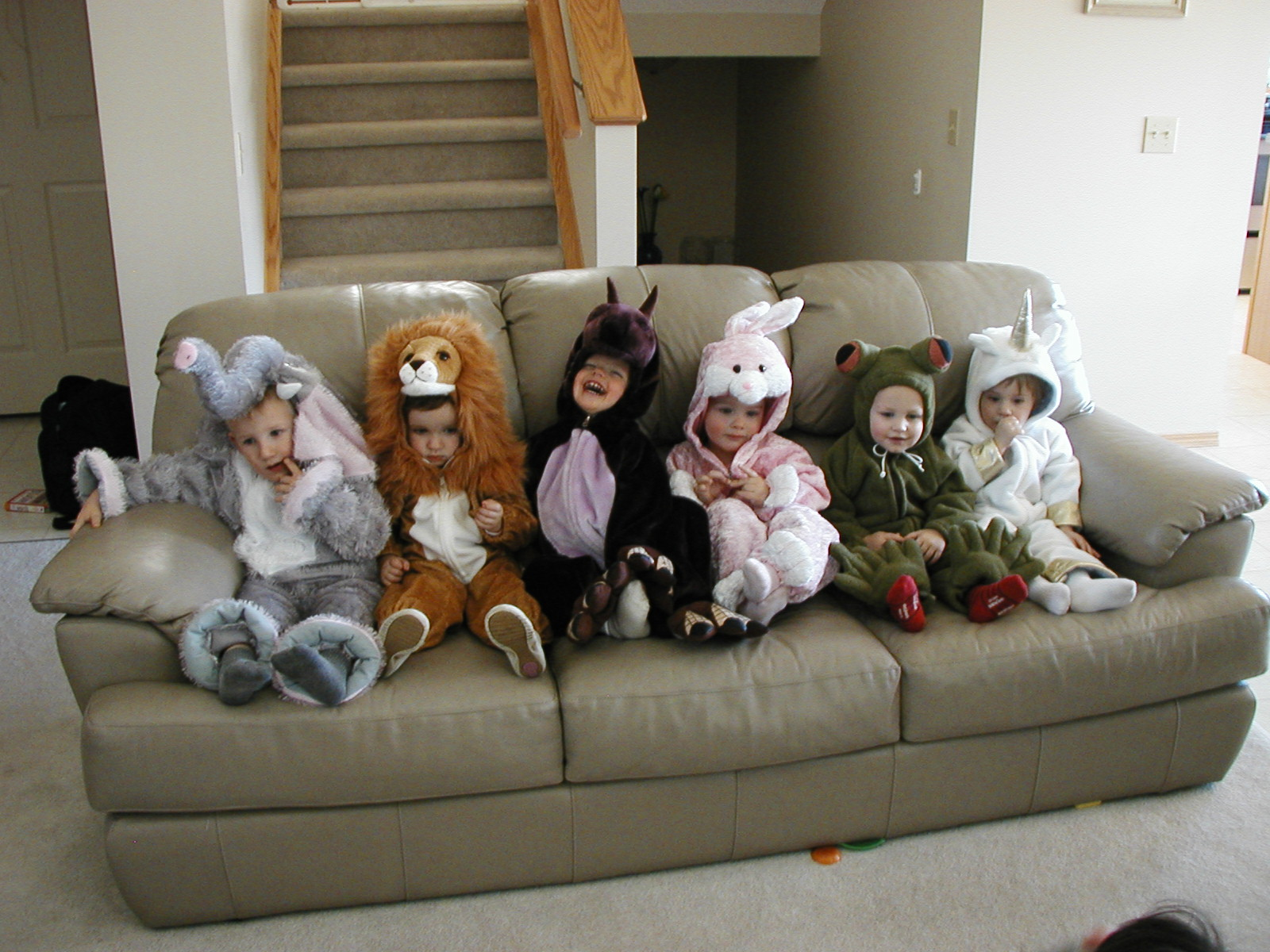 Animal Costumes