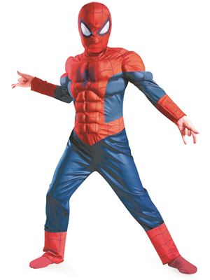 Spiderman Dress Up Costume