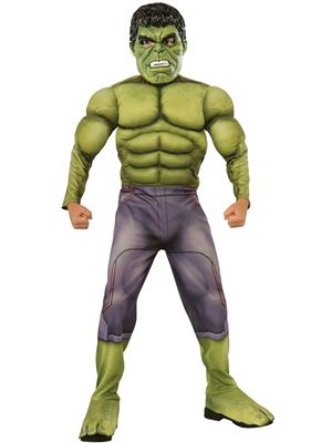 The Hulk Dress Up Costume