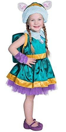 Everest Costume For Girls