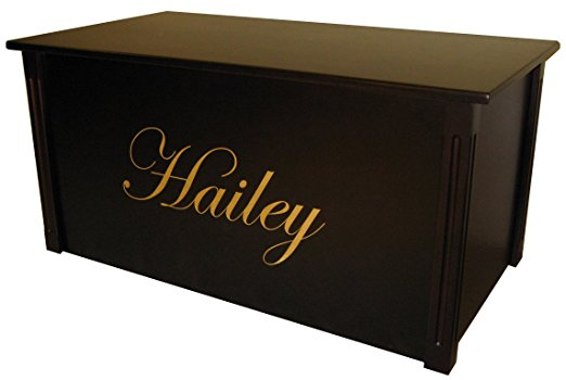Personalized Trunk for Girls - lots of ideas for dress up trunks at www.kidslovedressup.com