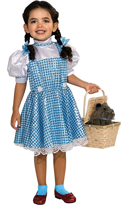 Book Character Costumes for Girls - Dorothy from Wizard of Oz!